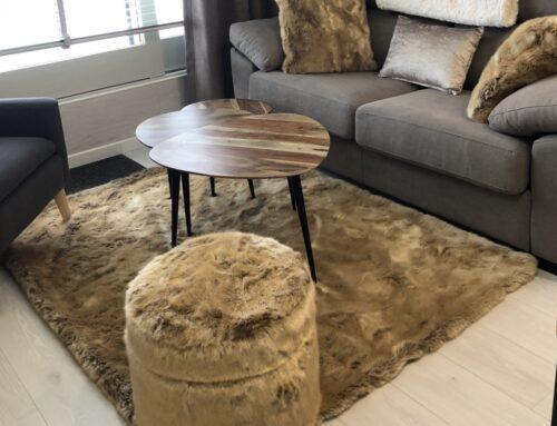 Alle pelzigen Möbel von Campart